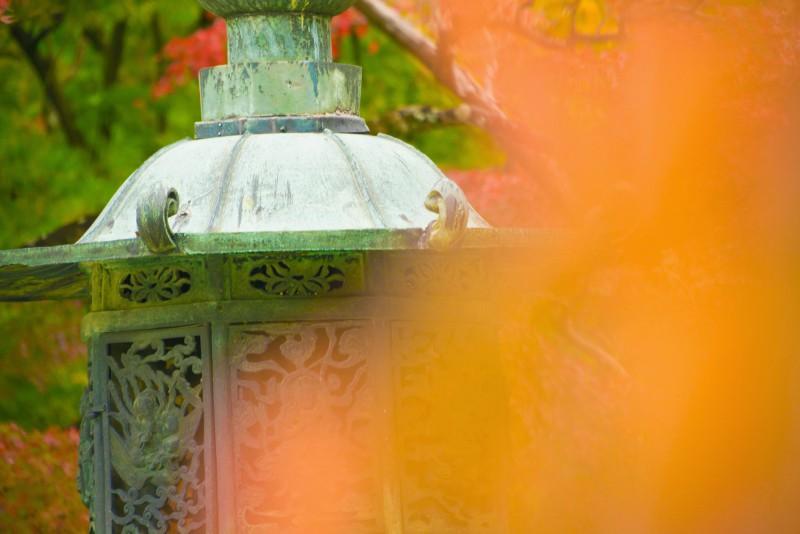 京都 紅葉 仁和寺 アイキャッチ画像