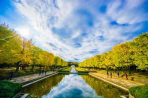 昭和記念公園 紅葉 アイキャッチ画像