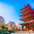 Saisyouin five-story pagoda