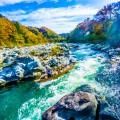 Nagatoro River boating featured image