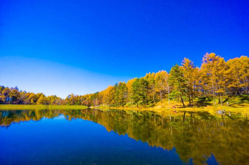mishaka pond featured image