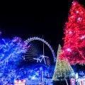 Yomiuri Land Illumination featured image