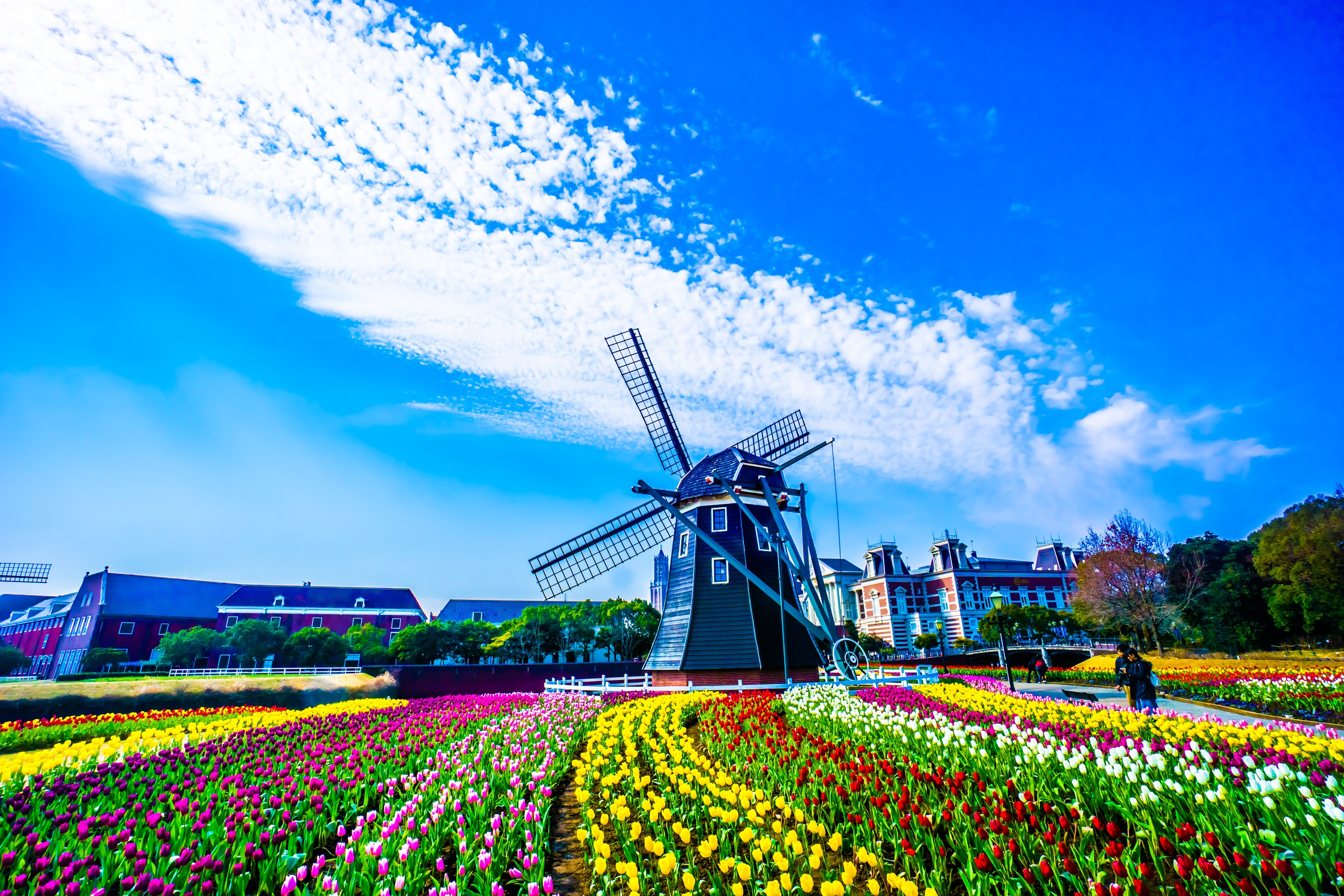Travel notes of Nagasaki: HUIS TEN BOSCH (1) (Flower Road and Amsterdam City etc.)