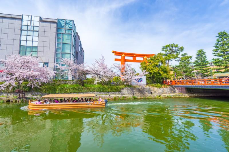 京都 桜 平安神宮 岡崎疎水 アイキャッチ画像