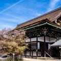 京都御所 アイキャッチ画像