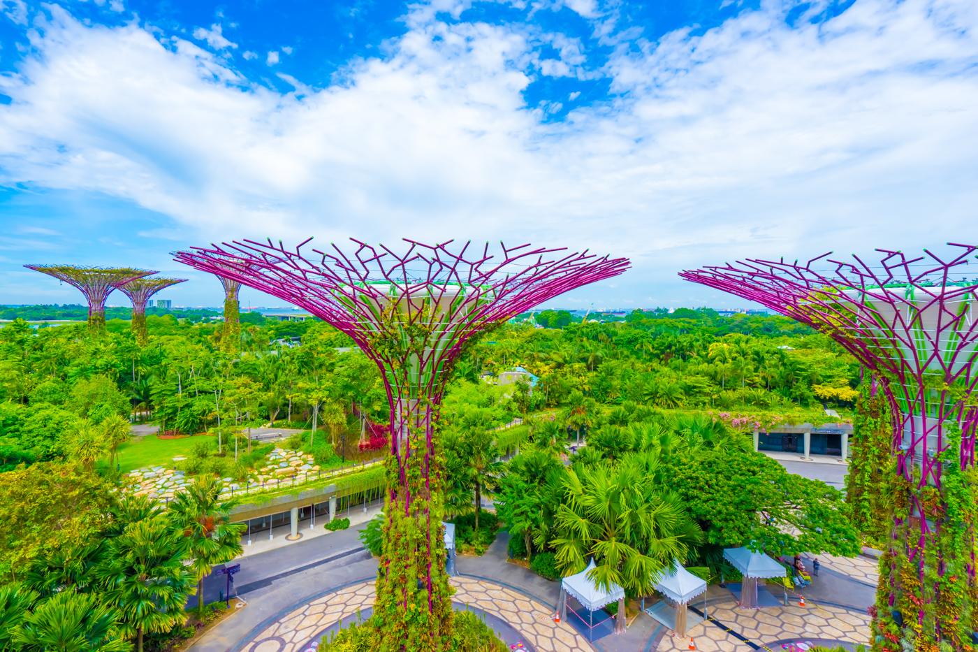 シンガポール ガーデンズ・バイ・ザ・ベイ アイキャッチ画像