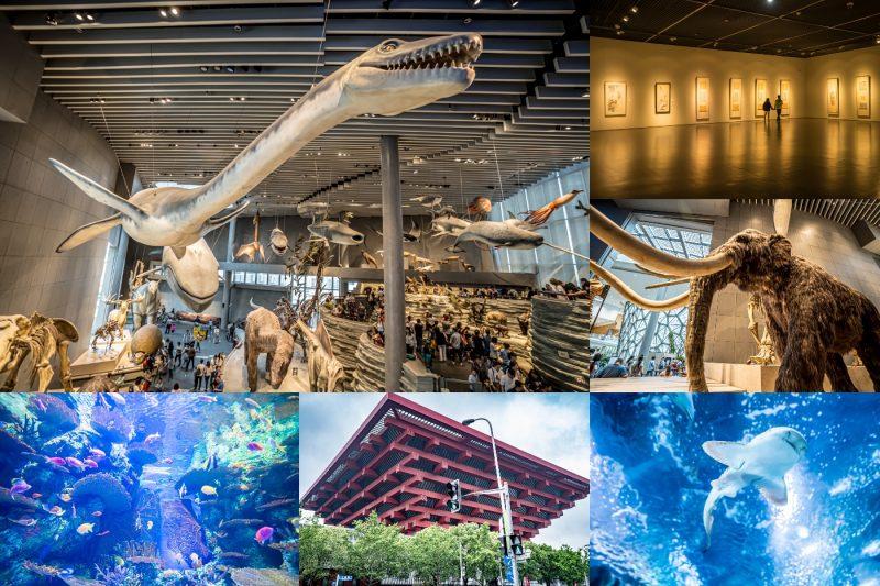 上海自然博物館・上海海洋水族館・中華芸術宮 アイキャッチ画像